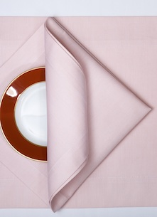 Набор салфеток Spinato Rosa salmerino